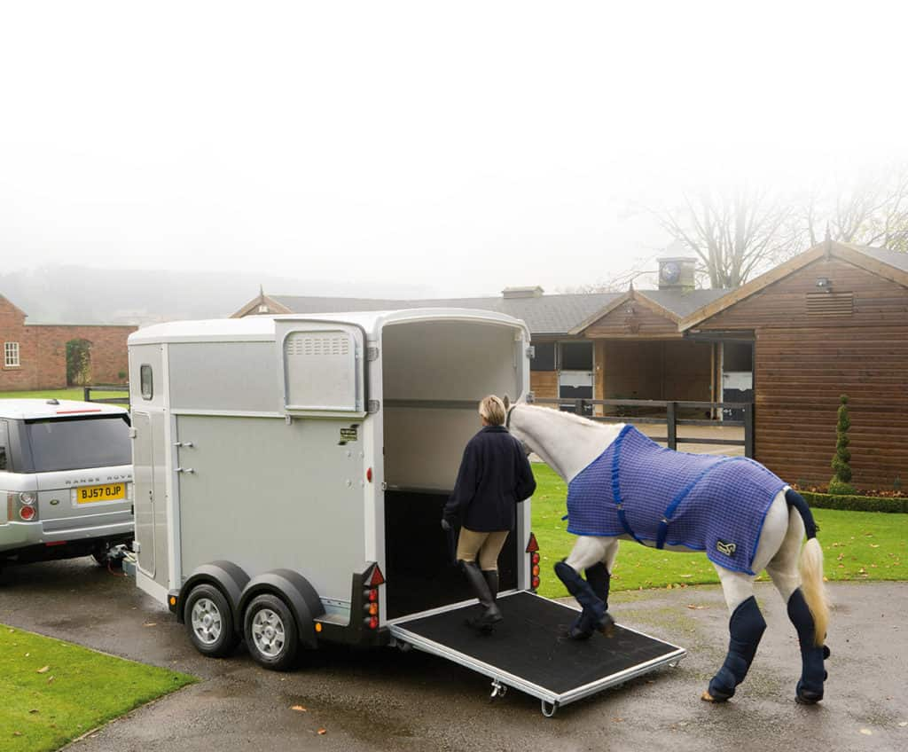 galleri-ifor-williams-hestetrailer-15